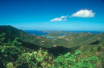 Virgin Islands Landscape